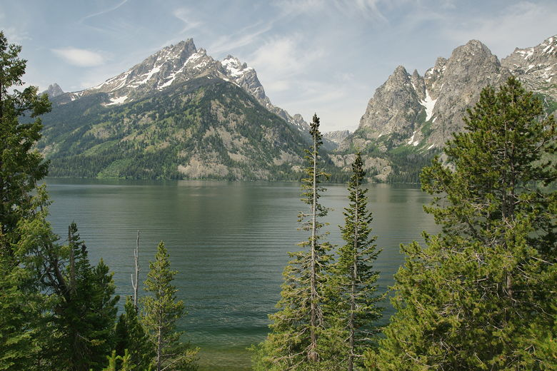 jenny lake campground